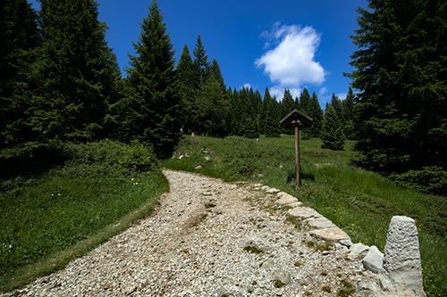 Sentiero per il cippo Soini