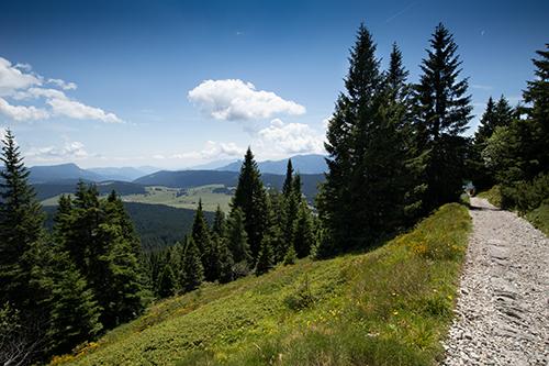 Vista dell'altopiano Vezzena dal sentiero